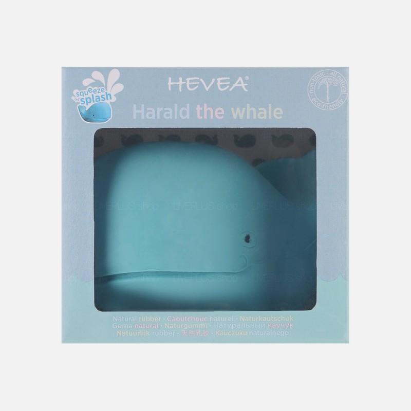 Hevea Harald The Whale